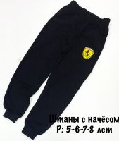 """Штаны с начесом """" ФУСИ"""" 5-8лет  №ФС355"""