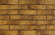 Nevada 9621 Фасадная плитка 24,5х6,5х0,65 Rustic/структурная (заказная)