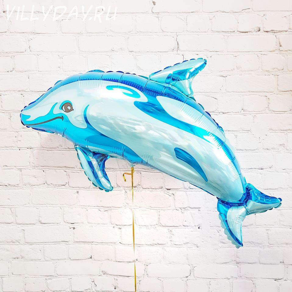 Дельфин 72×94 см