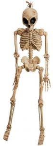 Скелет Пришельца (106 см)