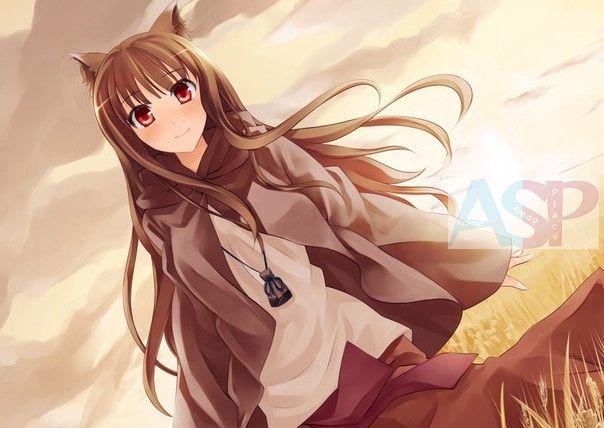 Плакат Ookami to Koushinryou