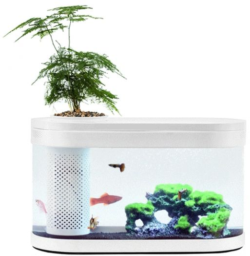 Аквариум акваферма Xiaomi Eco Fish Tank с функцией выращивания растений  (White)