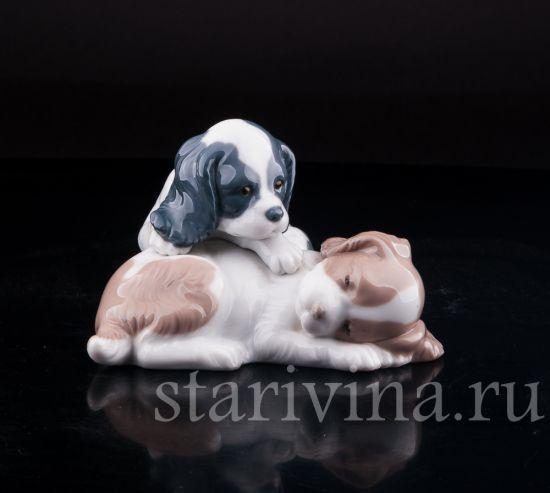 Изображение Два щенка, Lladro, Испания
