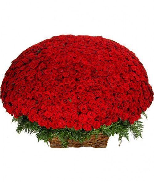 1001 роза в корзинах