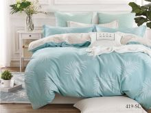 Постельное белье Сатин SL 2-спальный Арт.20/419-SL