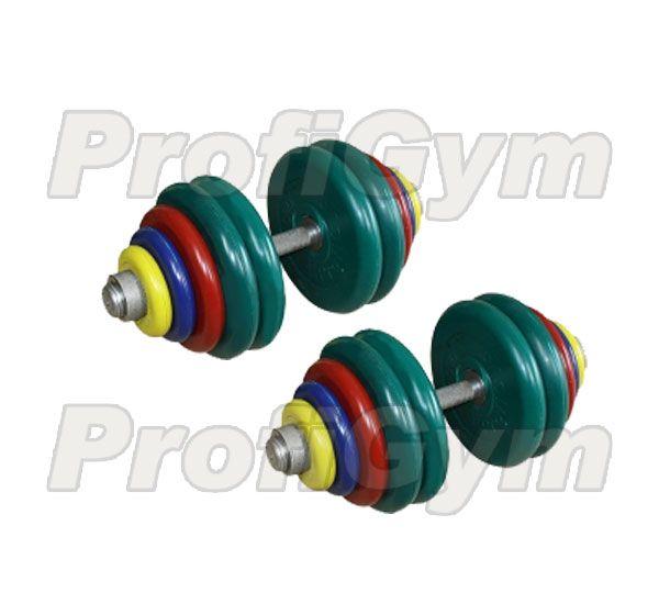 ГРЦ-60 Гантель разборная 60 кг цветная