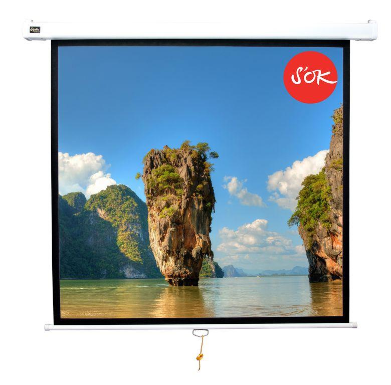 Экран S'OK SCPSW-220x220GR