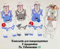 Набор для младенцев 6-12мес №BN555