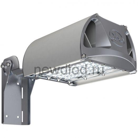 Уличный светильник TL-STREET 45 5К F2 W