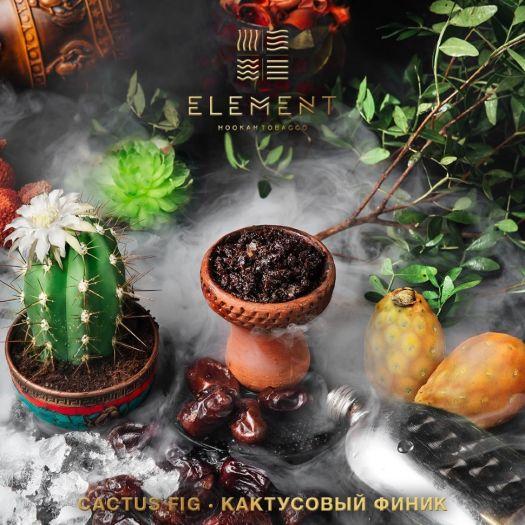 Element Кактусовый финик