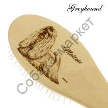 Мальтезе Greyhound by Ashley Craig