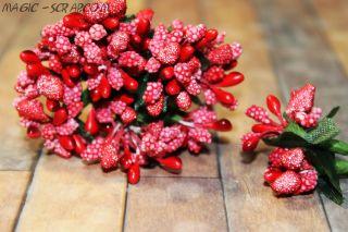Веточка с ягодками красная