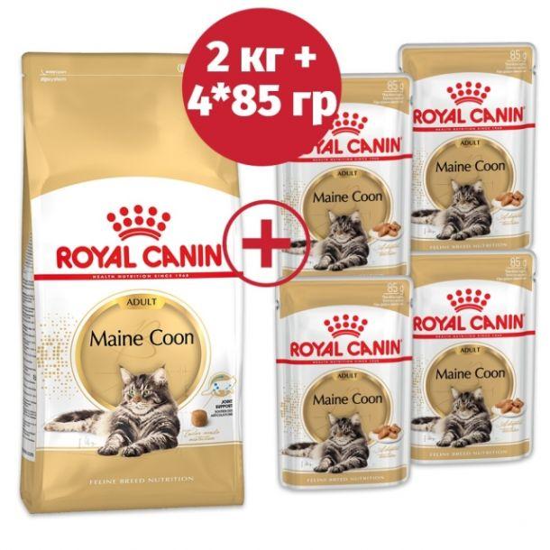 Корм сухой Royal Canin Maine Coon для кошек породы мейн-кун с птицей 2кг + 4 пауча в подарок!