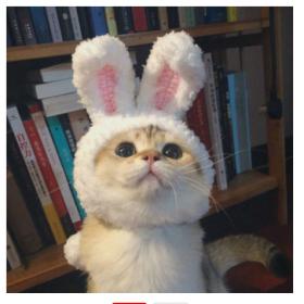 Весёлая шапочка для котика!