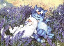 Postcard Lavender