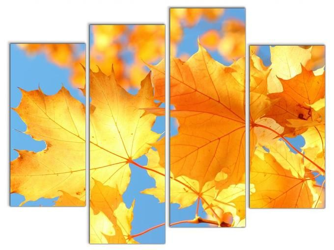 Модульная картина Кленовые листья