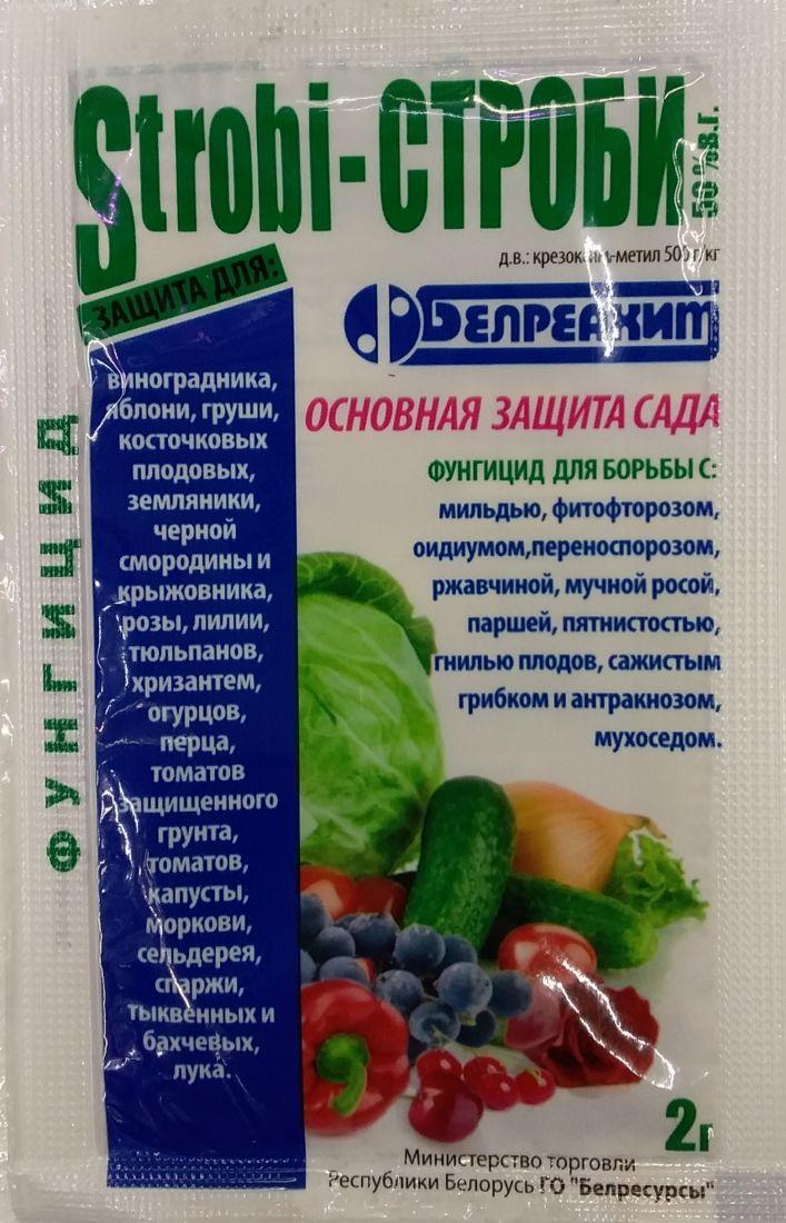 Системный фунгицид  Строби 2г (Беларусь)