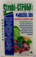 Строби (Белорусь)