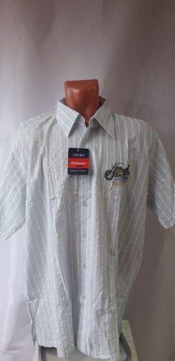 Рубашка мужская с коротким рукавом. SHIRT Atino