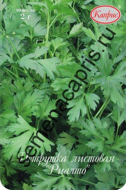 Петрушка листовая Риалто (Нидерланды)