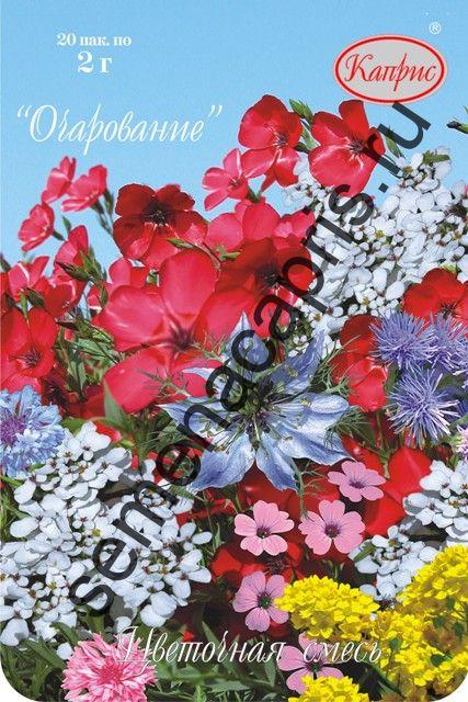 Цветочная Смесь Очарование (Каприс)