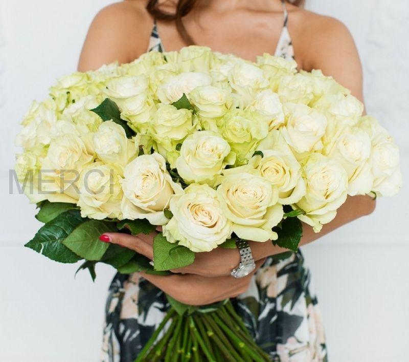 Букет из роз 51 шт, Эквадор (белые)