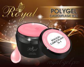 ACRYL GEL CAMOUFLAGE №04 ROYAL 30 мл
