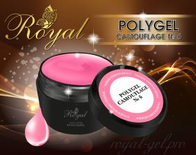 ACRYL GEL CAMOUFLAGE №06 ROYAL 30 мл