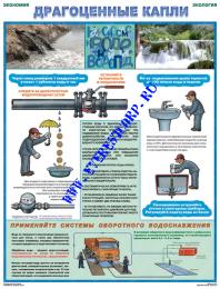 Экология и экономия
