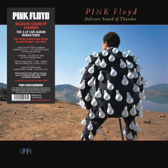 PINK FLOYD  Delicate Sound Of Thunder (2LP) 1988 (2017)