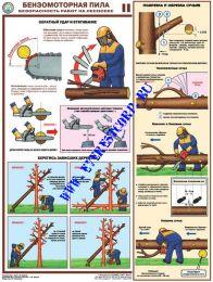 Бензомоторная пила. Безопасность работ на лесосеке