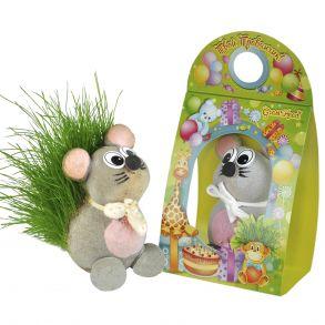 травянчик мышонок (32)