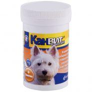 Canvit Biotin Витаминный препарат с высоким содержанием биотина для собак , 100 табл