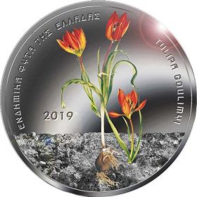 Тюльпан Гулими 5 евро Греция 2019
