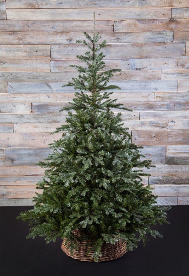 Искусственная елка Хрустальная 215 см заснеженная