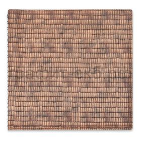 Книжка зап.Феникс+ 21,5х21,5см АНАКОНДА органайзер спираль160стр.клетка бронзовый металлик 48118