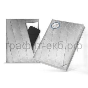 Книжка зап.180х240 Феникс+ Синтетическая бумага серебряная 120л. в точку 50333