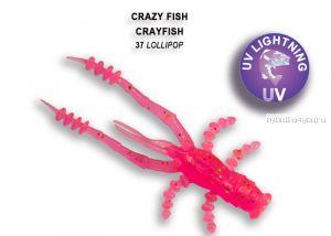 """Мягкая приманка Crazy Fish Crayfish 3"""" 75мм / упаковка 7 шт / цвет:37-6 (запах кальмар)"""
