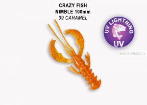"Мягкая приманка Crazy Fish Nimble 4"" 100мм / упаковка 5 шт / цвет:9-6 (запах кальмар)-V"