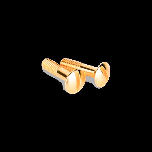 Винты для распределительной коробки/TV розетки 2 шт. WL18-22-01 золото