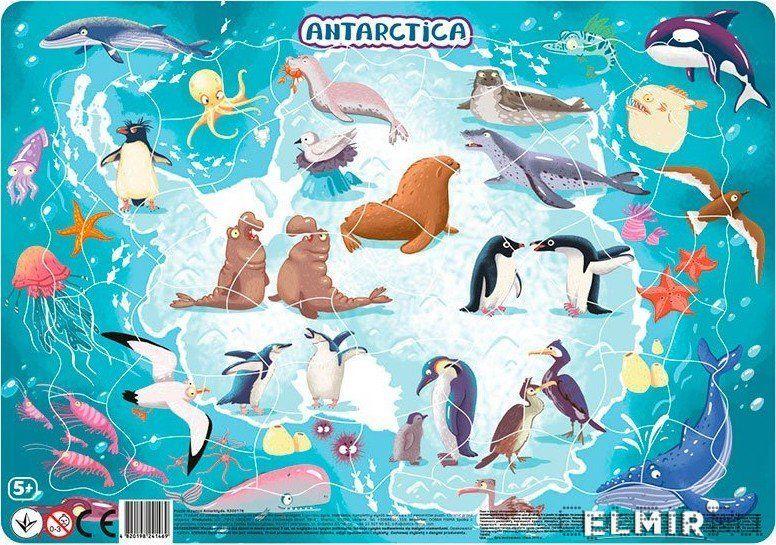 "Пазл в рамке ""Антарктида"" 53 элемента"
