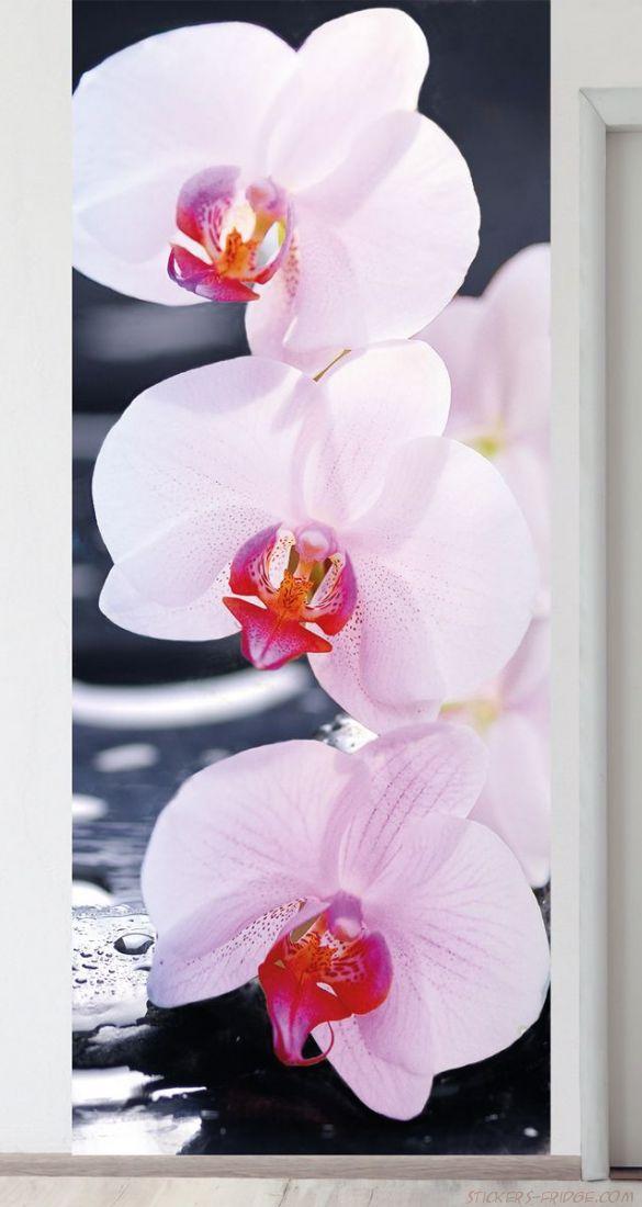 Панно на стену - SPA Орхидеи