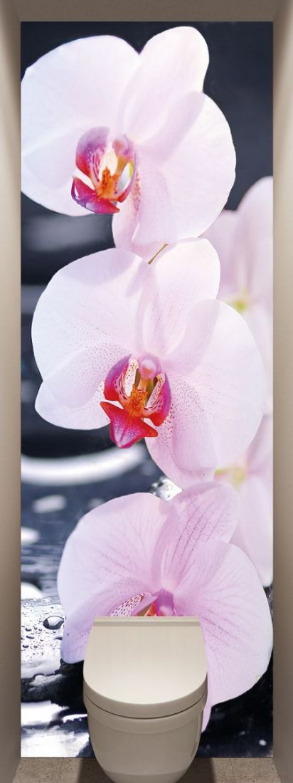 Фотообои в туалет - SPA Орхидеи