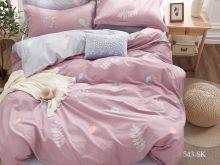Постельное белье Сатин SK 2- спальный Арт.20/543-SK