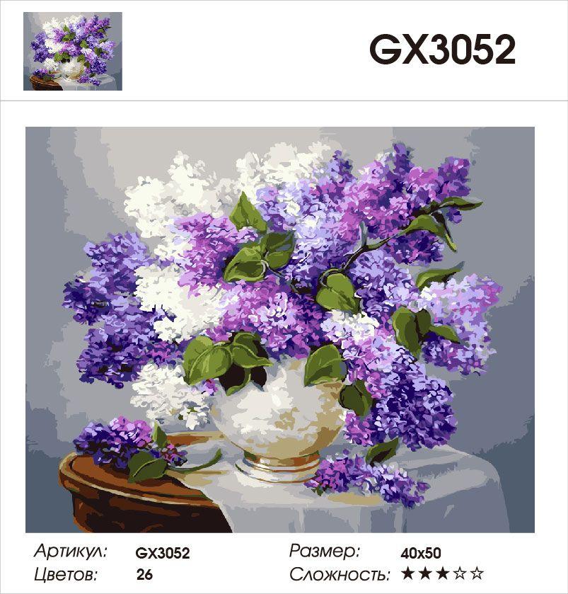 Картина по номерам на холсте GX3052
