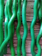 корилус (ветки орешника) ствол для топиария длина  30см  цвет ЗЕЛЕНЫЙ цена за штуку