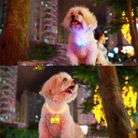 Светодиоидный брелок-адресник с информационной наклейкой для собак Косточка