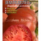 tomat-tomat-blagorodnyj-zemledelec-kollekcionnyj-myazinoj