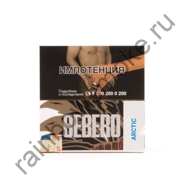 Sebero 40 гр - Arctic (Арктик)