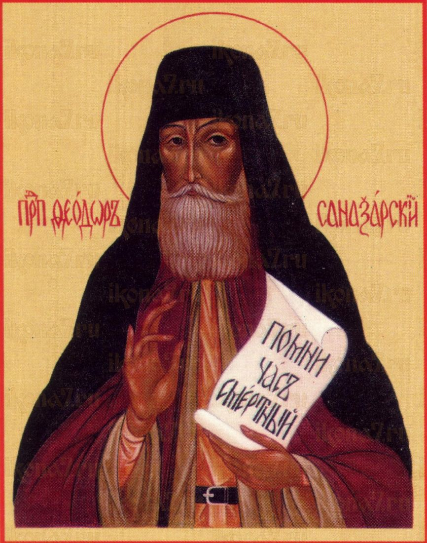 Икона Феодор Санаксарский